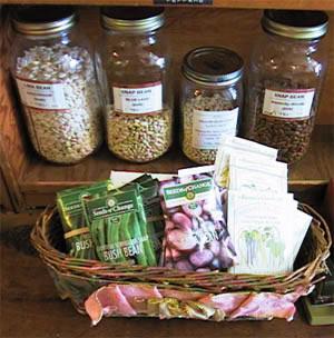 seedsbeans1